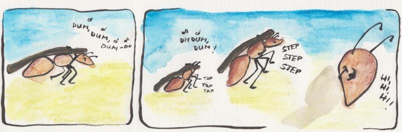 ant18
