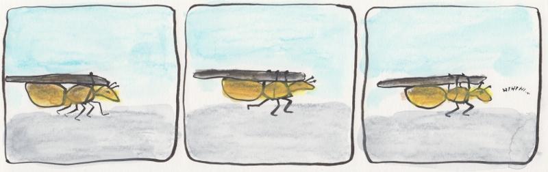 ant22